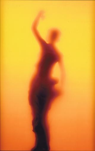 Andres Serrano Piss Elegance art for sale