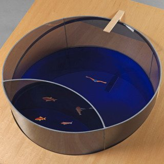 Dan Graham, Fish Pond/Swimming Pool