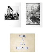 Ode a la Bievre - limited edition, by Louise Bourgeois