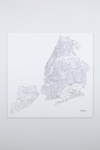 A More Perfect Union: New York City, by <a href='/site-admin/artists/artist/476'>R. Luke DuBois</a>