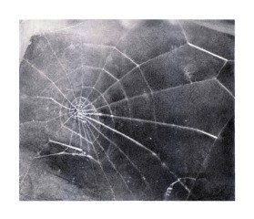 Spider Web, by <a href='/site-admin/artists/artist/986'>Vija Celmins</a>