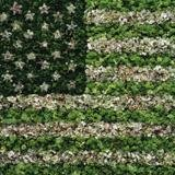 Vik Muniz, American Flag