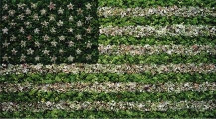Vik Muniz American Flag art for sale